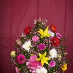 A RAINBOW ARRANGEMENT